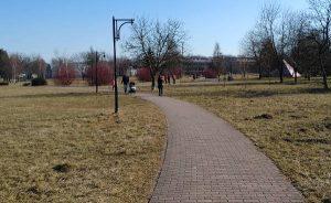 Park na terenie lotniska w Czyżynach